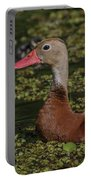 Duck 10 Portable Battery Charger