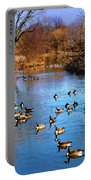 Duck Duck Goose Goose Portable Battery Charger