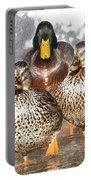Duck - Id 16235-220402-2840 Portable Battery Charger