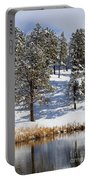 Duck Pond In Colorado Snow Portable Battery Charger