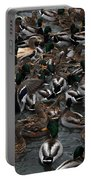 Duck Soup Portable Battery Charger