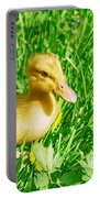 Duckling Portable Battery Charger