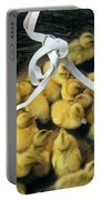 Ducklings In A Basket Portable Battery Charger