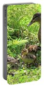 Ducklings Through The Ferns Portable Battery Charger