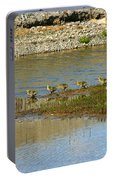 Ducks In A Row Portable Battery Charger