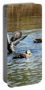 Ducks On Colorful Pond Portable Battery Charger