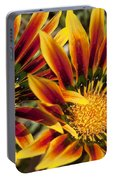 Dueling Gerberas Portable Battery Charger