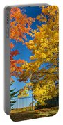 Dueling Maples Portable Battery Charger