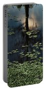 Dusk In The Swamp Portable Battery Charger