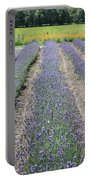 Dutch Lavender Field Portable Battery Charger