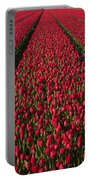 Dutch Tulips Second Shoot Of 2015 Part 1 Portable Battery Charger