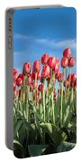 Dutch Tulips Second Shoot Of 2015 Part 10 Portable Battery Charger