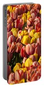 Dutch Tulips Second Shoot Of 2015 Part 9 Portable Battery Charger