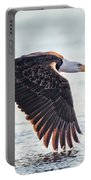 Eagle Catch Portable Battery Charger