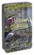 Eagle Lakes Park - Roseate Spoonbill And Friends, Socializing Portable Battery Charger