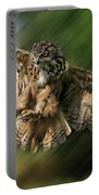 Eagle Owl Landing Portable Battery Charger