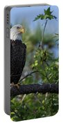 Eagle Series 13 Portable Battery Charger