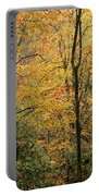 Early Autumn Portable Battery Charger