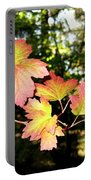 Early Days Of Autumn Portable Battery Charger