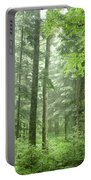 Early Morning In Swiss Forest Portable Battery Charger