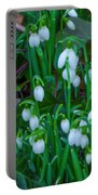 Early Spring Portable Battery Charger