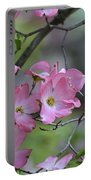 Early Spring Color Portable Battery Charger