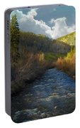 Early Spring Delores River Portable Battery Charger