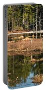 Early Spring Marsh Portable Battery Charger
