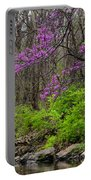 Early Spring On Mill Creek 2 Portable Battery Charger