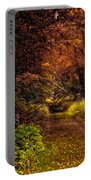 Earth Tones In A Illinois Woods Portable Battery Charger