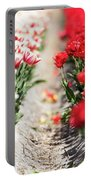 East And West A Dutch Tulip Story Portable Battery Charger