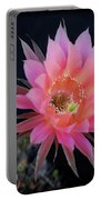 Easter Lily Cactus Portable Battery Charger