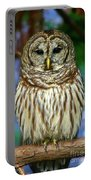 Eastern Barred Owl Portable Battery Charger