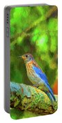 Eastern Blue Bird With Flair Portable Battery Charger