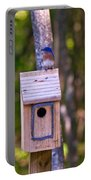 Eastern Bluebird Perched On Birdhouse 4 Portable Battery Charger