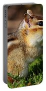 Eastern Chipmunk Portable Battery Charger
