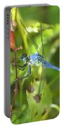 Eastern Pondhawk Dragonfly Portable Battery Charger