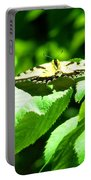 Wildlife Scenes #4 Portable Battery Charger