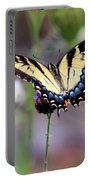 Eastern Tiger Swallowtail Butterfly In Garden 2016 Portable Battery Charger