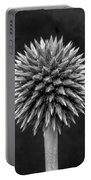 Echinops Monochrome Portable Battery Charger