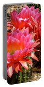 Echinopsis Flowers In Bloom II Portable Battery Charger