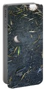 Eclipse Art 2 Portable Battery Charger