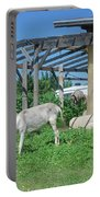 Ecological Farm Portable Battery Charger