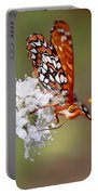 Edith's Checkerspot Five Portable Battery Charger