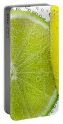 Effervescent Lime And Lemon By Kaye Menner Portable Battery Charger