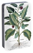 Eggplant, 1735 Portable Battery Charger