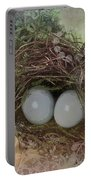 Eggs In A Nest Portable Battery Charger