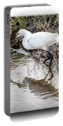Egret 3 Portable Battery Charger