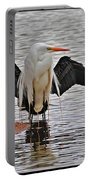 Egret And Cormorant Wings Portable Battery Charger