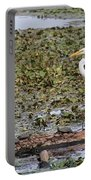 Egret And Turtles Portable Battery Charger